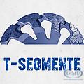 Diamant Schleiftöpfe T-förmige Segmente